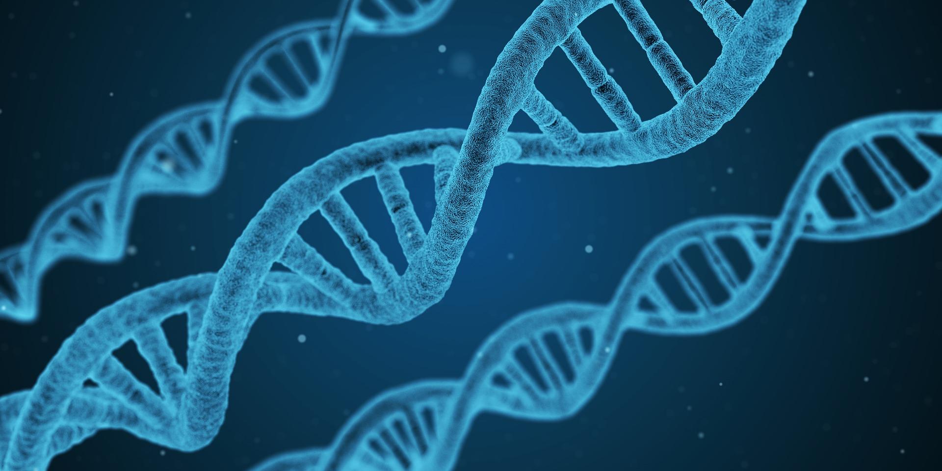 BİLİM - DNA