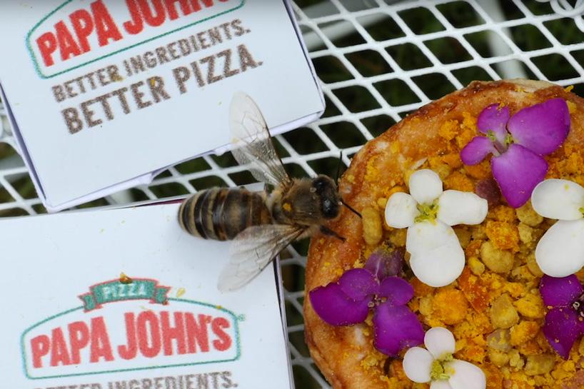 Arı Popülasyonu